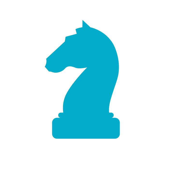 icoon_strategie_wit